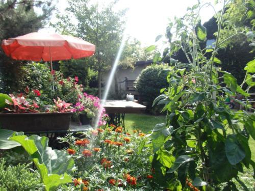 Konkurs najpiękniejszy ogród - ul. Rybnicka 167